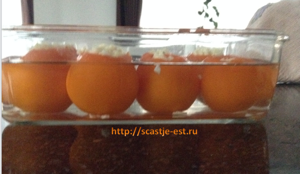 malosolnie_pomidori_bistro_1