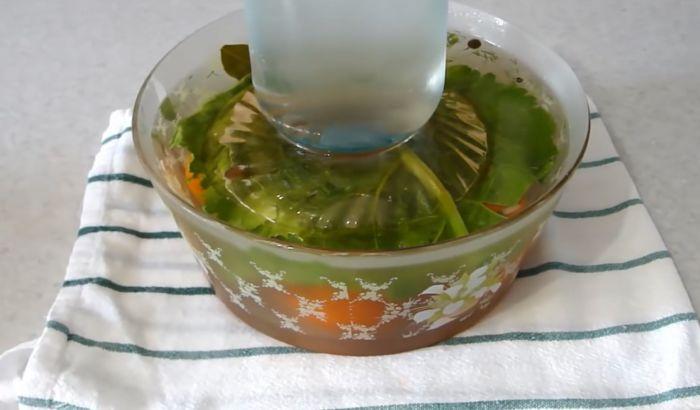 Малосольные помидоры с чесноком и зеленью - 7 рецептов быстрой и вкусной закуски