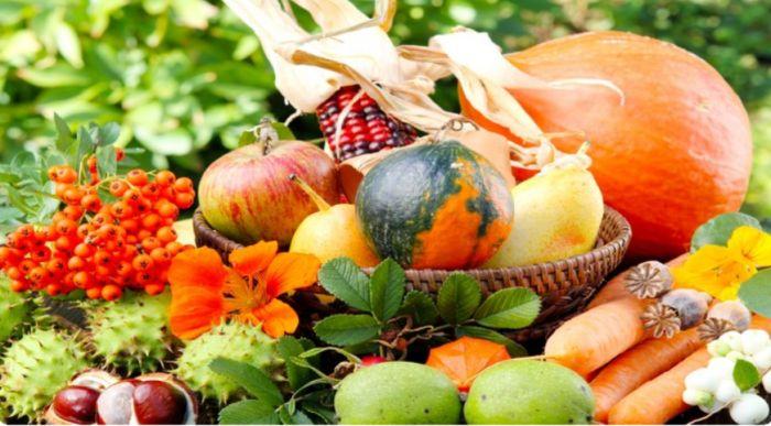 благоприятные дни для посадки цветов и овощей