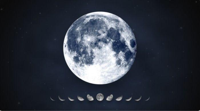 влияние фаз Луны на энергию растений