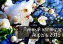 Лунный посевной календарь садовода и огородника на апрель 2019 год