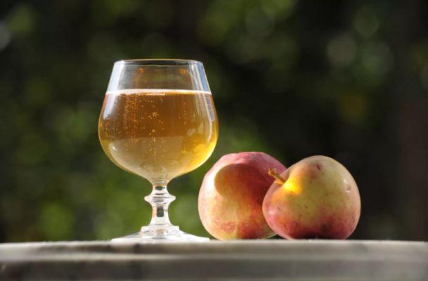 простой рецепт яблочного вина