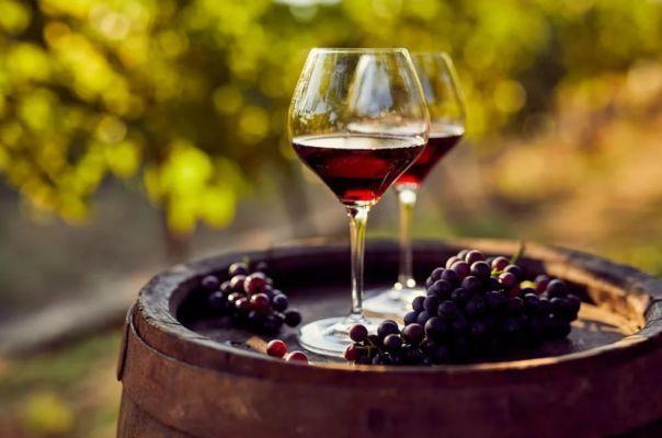 Как готовить виноградное вино дома
