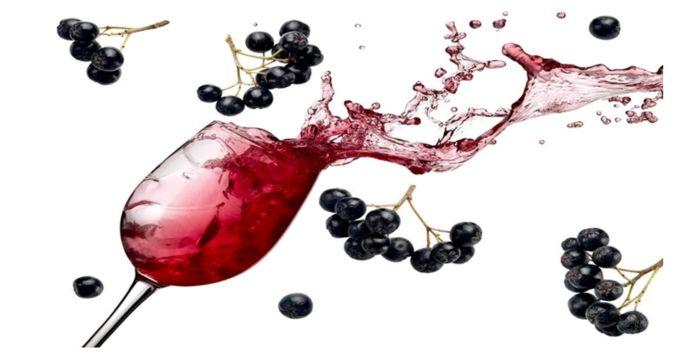 вино из черноплодной рябины без дрожжей