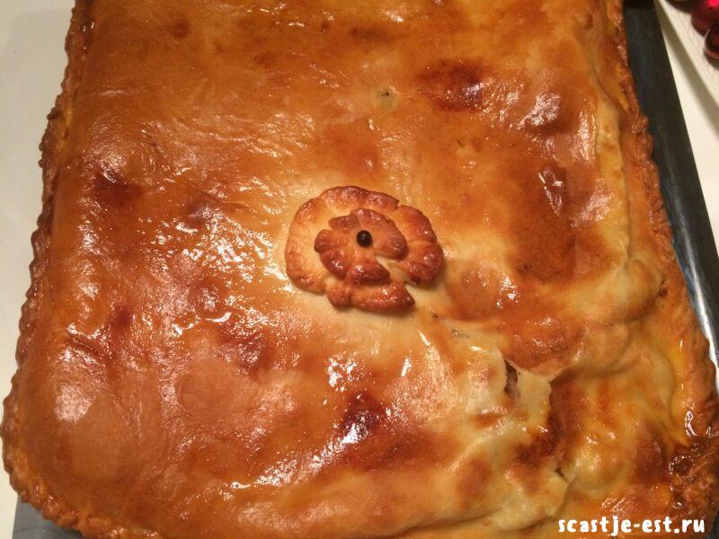 Пирог с мясом в духовке из дрожжевого теста